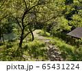長池公園(八王子市) 65431224