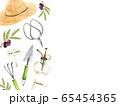 ガーデニング 模様 水彩イラスト 65454365