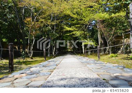 鹿王院の庭園(京都市右京区嵯峨北堀町) 65455620
