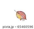 妖精 どんぐり 65460596