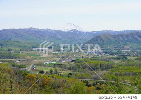 カルデラ展望所から見る春の羊蹄山 65474149