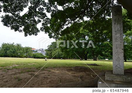 「史蹟 武蔵國分寺址」の石碑(東京都国分寺市) 65487946