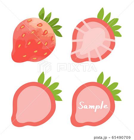 イチゴの手描きイラストセット(全体、断面、フレーム) 65490709