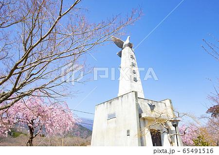 【山梨県】大法師公園 桜と平和の塔 65491516