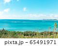 海 65491971