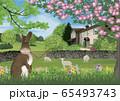 春のイギリス湖水地方のイラスト 65493743