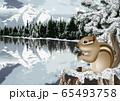 冬のカナディアンロッキーのイラスト 65493758
