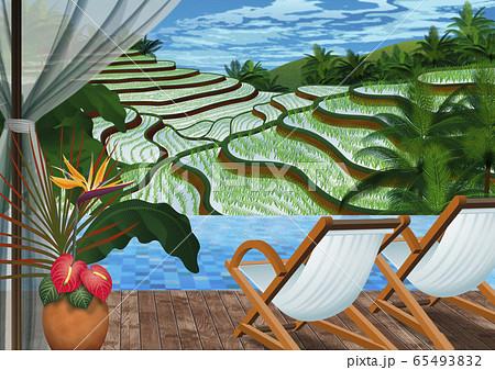 インドネシア テラスから見た棚田のイラスト 65493832