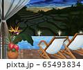 インドネシア テラスから見た夜の棚田のイラスト 65493834