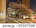 山手通りと目黒川の夜桜 65507586
