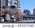 中野駅前の桜並木 65507589