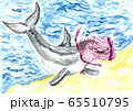 Dolphin and plastic 65510795