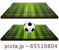 3D soccer ball on field 65510804