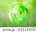 新緑(背景素材) 65513459