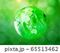 新緑(背景素材) 65513462