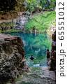 メキシコ バジャドリ  セノーテ・サシで泳ぐ人 65551012
