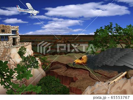 グランドキャニオンを飛ぶとセスナ機とコンドルのイラスト 65553767