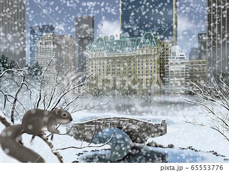 冬のセントラルパークとリスのイラスト 65553776