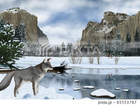 冬のヨセミテ国立公園の風景とキツネのイラスト 65553787