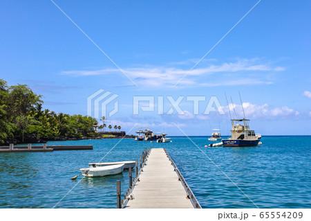 (ハワイ)ビッグアイランド・南国の海 65554209