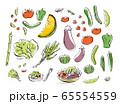 野菜イラスト 65554559