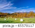 (長野県)木曽の御嶽山 牧草ロール 65570117