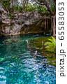 メキシコ グランセノーテで泳ぐ人  65583053