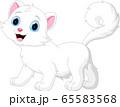 Cartoon funny white cat isolated on white background 65583568