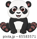 Cute little panda sitting isolated on white background 65583571