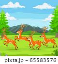 Cartoon deers running in the forest 65583576