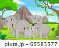 Cartoon elephants family in the jungle 65583577