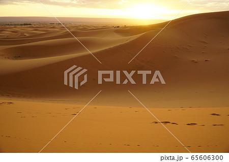 砂漠 65606300