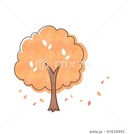 紅葉の木 65628992