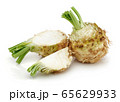 Fresh celery stalk and celeriac slice isolated 65629933