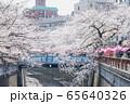 東京都 サクラの名所 目黒川の春 池尻大橋駅付近 65640326