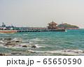 View of Zhanqiao Pier 65650590