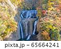 茨城県 日本三大名瀑 袋田の滝 紅葉 65664241