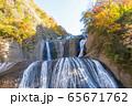 茨城県 日本三大名瀑 袋田の滝 紅葉 65671762