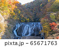 茨城県 日本三大名瀑 袋田の滝 紅葉 65671763