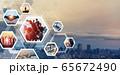 グローバルビジネス 65672490
