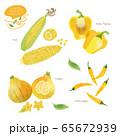 黄色い野菜のイラスト / アソート / 手描き風 65672939