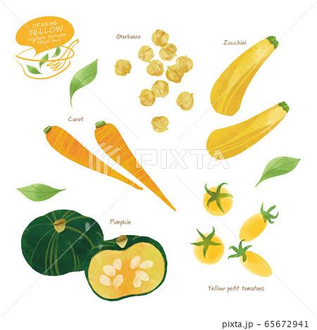 黄色い野菜のイラスト / アソート / 手描き風 65672941