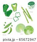 緑の野菜のイラスト / アソート / 手描き風 65672947
