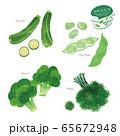 緑の野菜のイラスト / アソート / 手描き風 65672948