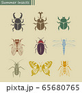 夏の昆虫セット アイコンスタンプ 65680765