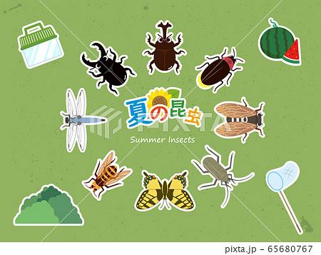 カワイイ夏の昆虫セット 白縁 65680767