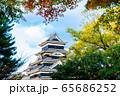 長野県松本市 紅葉時期の松本城 65686252