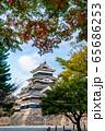 長野県松本市 紅葉時期の松本城 65686253