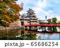 長野県松本市 紅葉時期の松本城 65686254