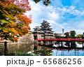 長野県松本市 紅葉時期の松本城 65686256